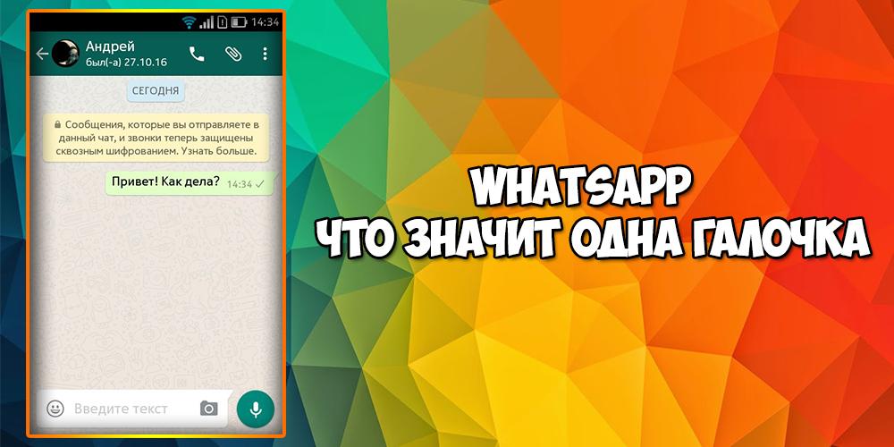 Что значит одна галочка в Whatsapp