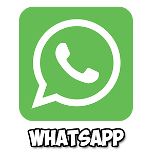 Использование Whatsapp logo