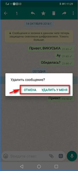 Второй вариант диалога удаления сообщения в WhatsApp