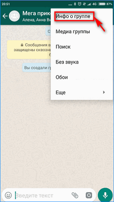 Вход в настройки группы WhatsApp