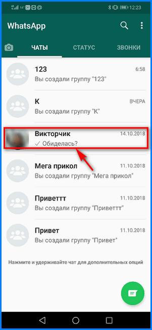 Вход в чат с заблокированным пользователем WhatsApp