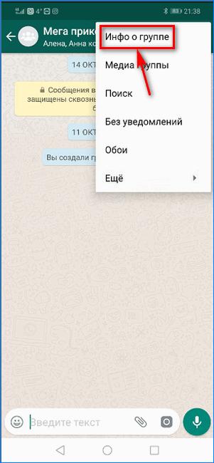 Открытие окна с информацией о группе WhatsApp