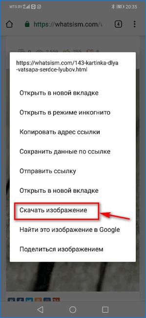 Скачивание картинок для статуса WhatsApp