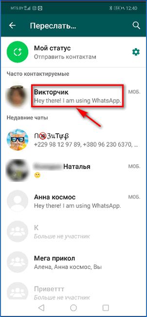 Выбор контакта для передачи видео из публичного чата WhatsApp